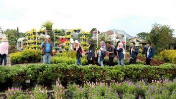 Foto: Wahyudin Rukmana/ Magang