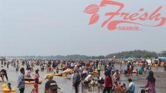 Wisatawan bermain di Pantai Tanjung Pakis, Desa Tanjung Pakis, Kecamatan Pakis Jaya, Kabupaten Karawang, Sabtu (8/6/2019). Rizky Syahaqy / Suaka